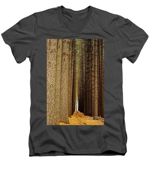 Sugar Pine Walk Men's V-Neck T-Shirt