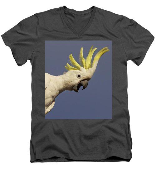 Sulphur-crested Cockatoo Displaying Men's V-Neck T-Shirt