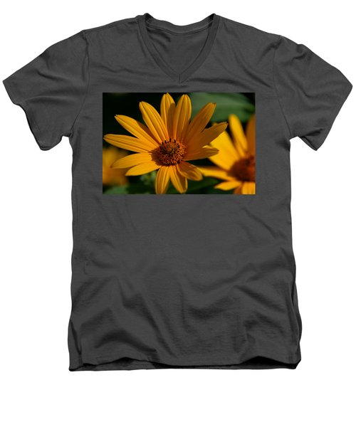 Men's V-Neck T-Shirt featuring the photograph Summer Delight by Denyse Duhaime