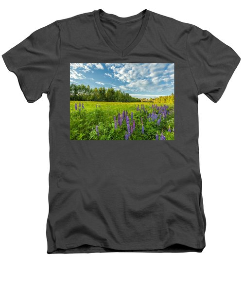 Summer Dream Men's V-Neck T-Shirt by Rose-Maries Pictures
