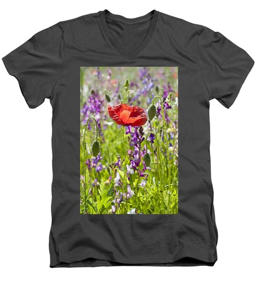 Summer Men's V-Neck T-Shirt by Lana Enderle