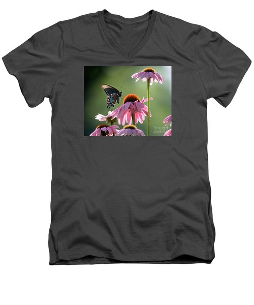 Summer Morning Light Men's V-Neck T-Shirt