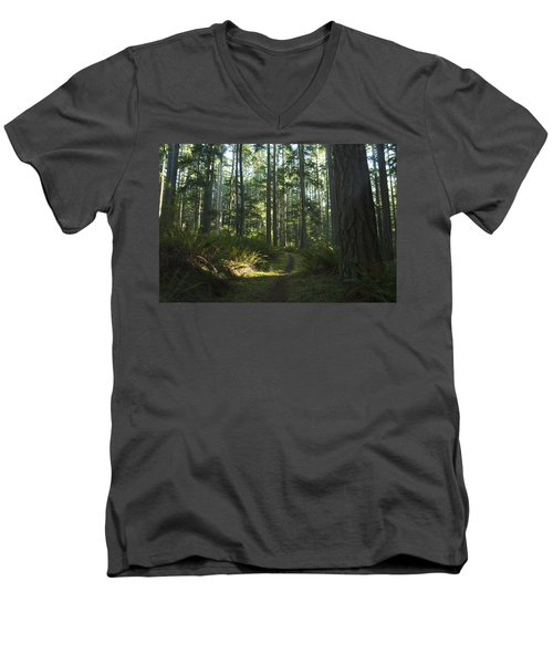 Summer Pacific Northwest Forest Men's V-Neck T-Shirt