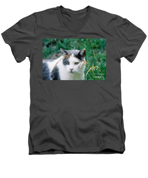 Men's V-Neck T-Shirt featuring the photograph Summer Stroll by Donna Brown