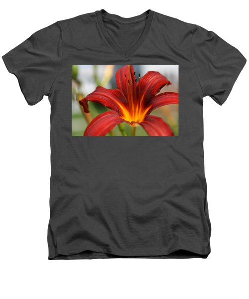 Men's V-Neck T-Shirt featuring the photograph Sunburst Lily by Neal Eslinger
