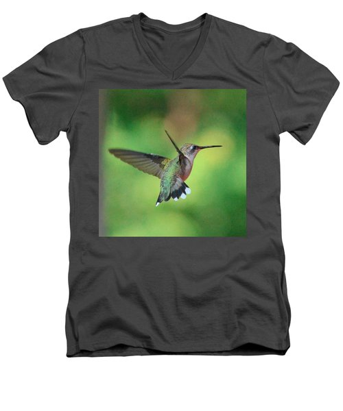 Suncatcher Men's V-Neck T-Shirt by Amy Porter