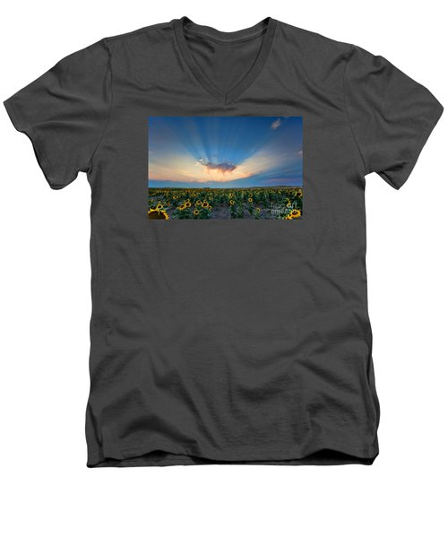 Sunflower Field At Sunset Men's V-Neck T-Shirt by Jim Garrison
