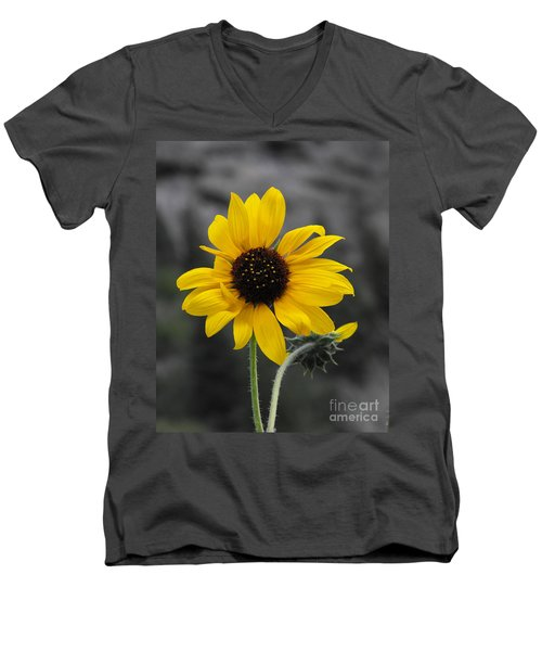 Men's V-Neck T-Shirt featuring the photograph Sunflower On Gray by Rebecca Margraf
