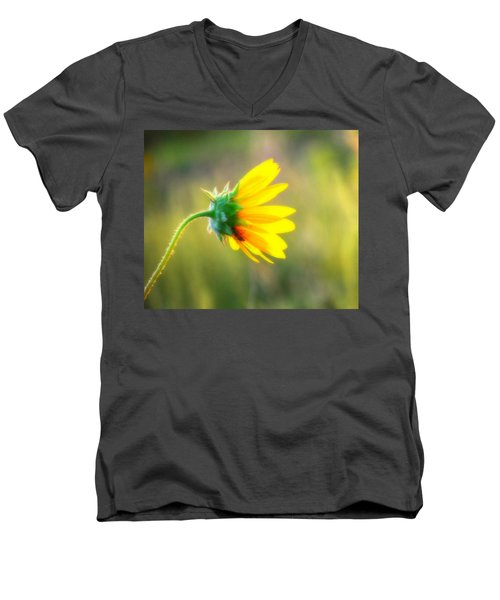 Sunflower Sunrise 6 Men's V-Neck T-Shirt