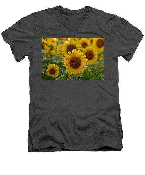 Sunflowers At The Farm Men's V-Neck T-Shirt by Denyse Duhaime