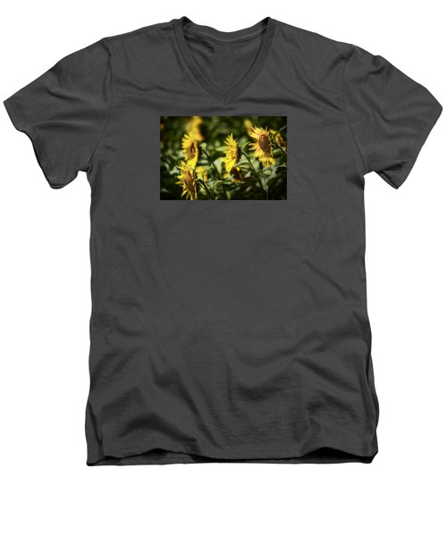 Men's V-Neck T-Shirt featuring the photograph Sunflowers In The Wind by Steven Sparks