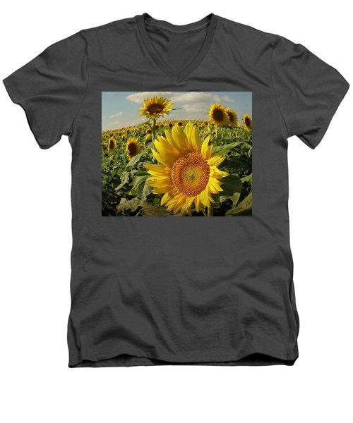 Kansas Sunflowers Men's V-Neck T-Shirt by Chris Berry