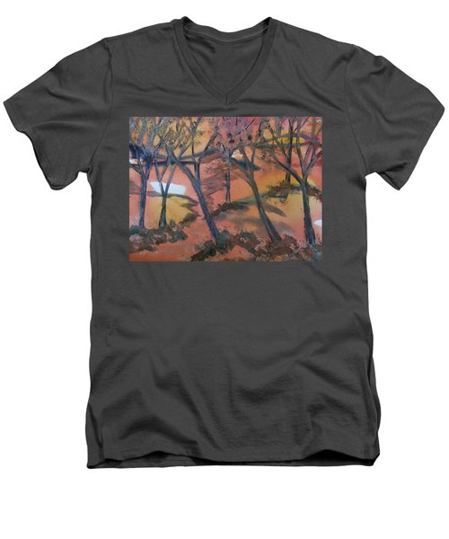 Sunlit Forest Men's V-Neck T-Shirt