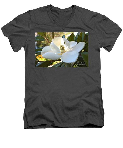 Sunlit Southern Magnolia Men's V-Neck T-Shirt
