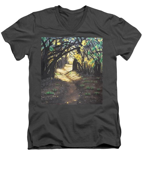 Sunlit Trail Men's V-Neck T-Shirt
