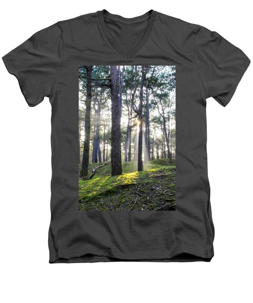 Sunlit Trees Men's V-Neck T-Shirt