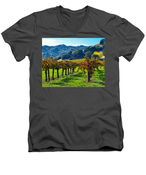 Sunny Autumn Vineyards Men's V-Neck T-Shirt by CML Brown