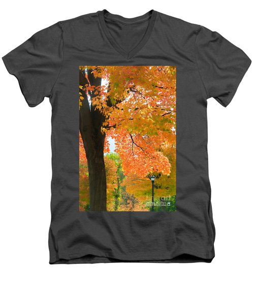 Sunny Fall Day By David Lawrence Men's V-Neck T-Shirt