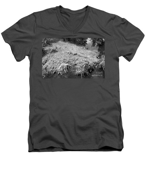 Men's V-Neck T-Shirt featuring the photograph Sunny Gator Black And White by Joseph Baril