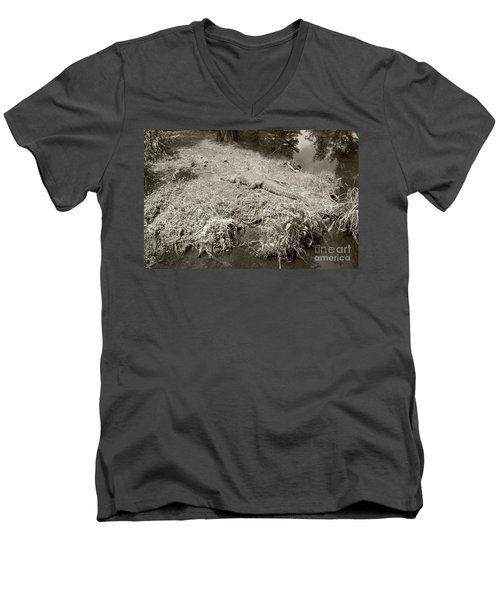 Men's V-Neck T-Shirt featuring the photograph Sunny Gator Sepia  by Joseph Baril