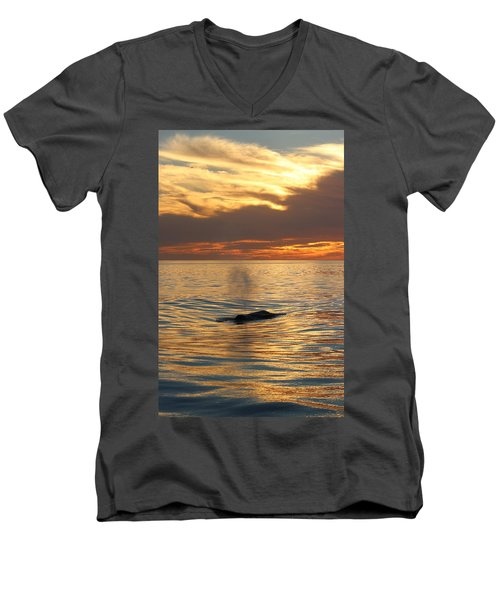 Sunset Wonder Men's V-Neck T-Shirt