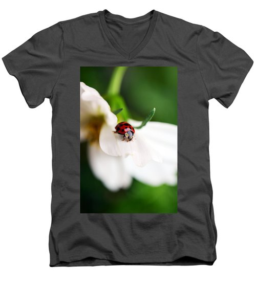 Sunshine And Petal Rest Men's V-Neck T-Shirt