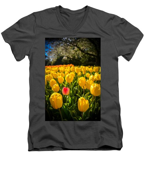 Men's V-Neck T-Shirt featuring the photograph Surrounded by Kristopher Schoenleber