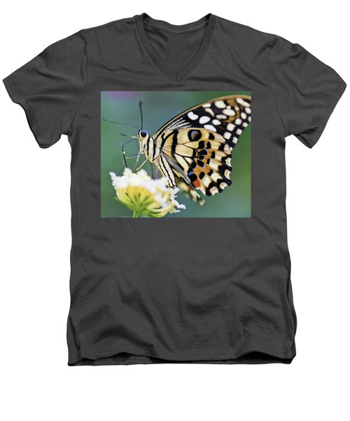 Swallowtail Butterfly Men's V-Neck T-Shirt
