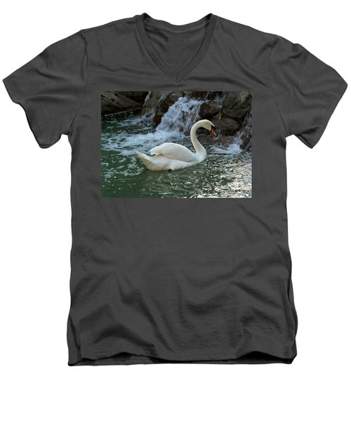 Swan A Swimming Men's V-Neck T-Shirt