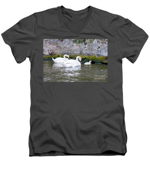 Swans And Cygnets In Brugge Canal Belgium Men's V-Neck T-Shirt