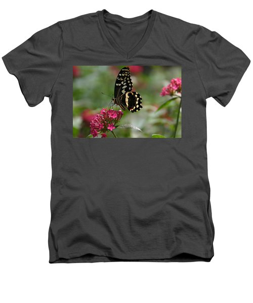 Men's V-Neck T-Shirt featuring the photograph Sweet Nectar by Denyse Duhaime