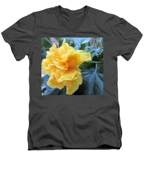 Sweet Spot Men's V-Neck T-Shirt