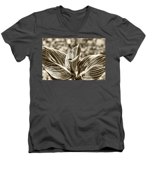 Swirls And Stripes Men's V-Neck T-Shirt