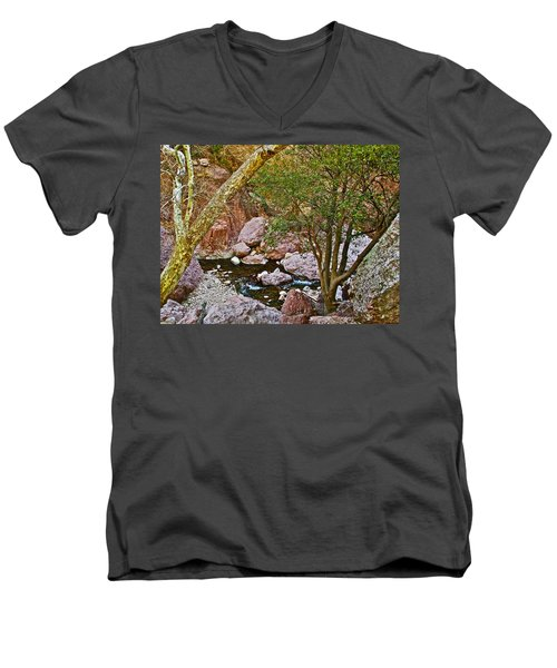 Sycamore And Cottonwood In Whitewater Catwalk National Recreation Trail Near Glenwood-new Mexico  Men's V-Neck T-Shirt by Ruth Hager