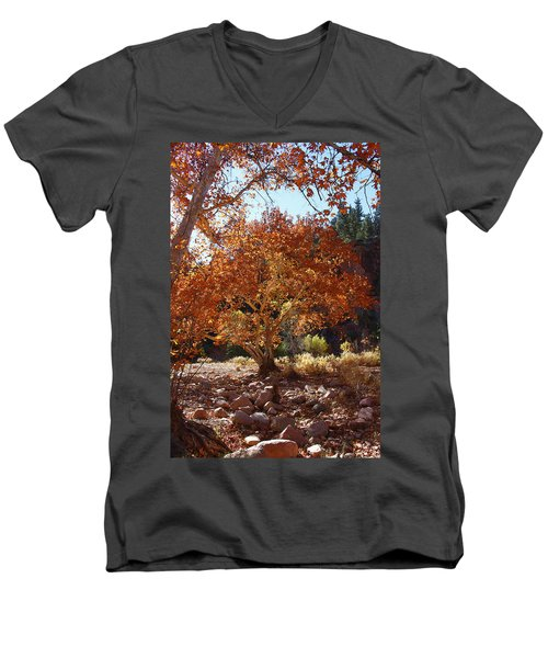 Sycamore Trees Fall Colors Men's V-Neck T-Shirt by Tom Janca