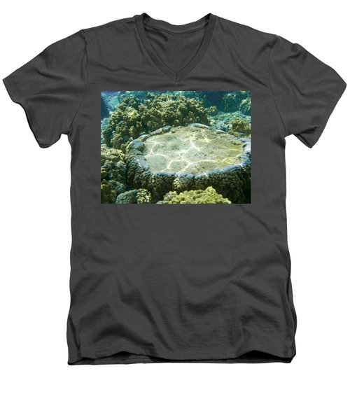Table Top Coral Men's V-Neck T-Shirt by Denise Bird