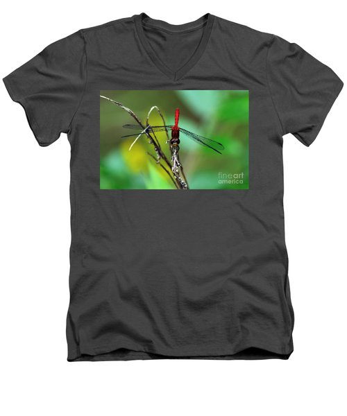 Taking A Bow Men's V-Neck T-Shirt by Kevin Fortier