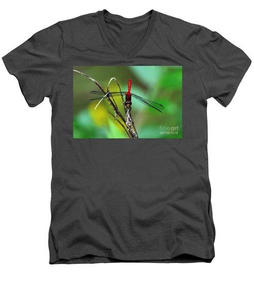 Taking A Bow Men's V-Neck T-Shirt