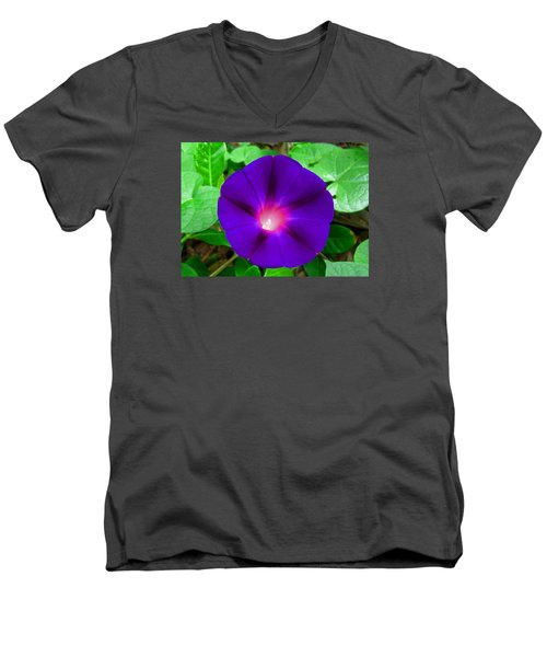 Tall Morning Glory Men's V-Neck T-Shirt