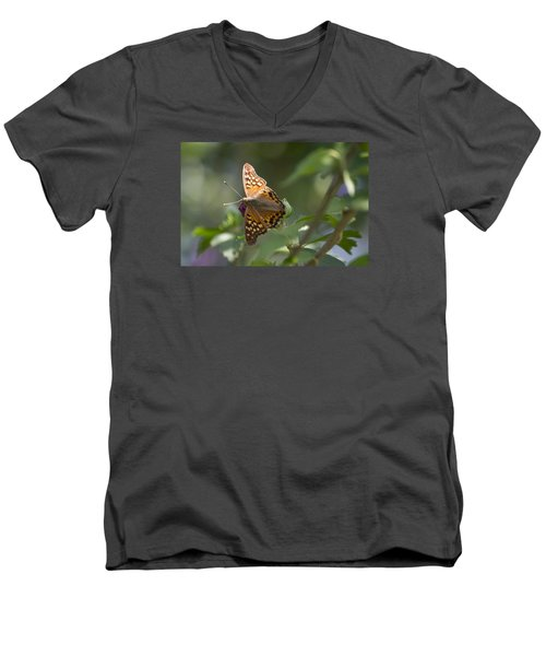 Tawny Emperor On Hibiscus Men's V-Neck T-Shirt by Shelly Gunderson