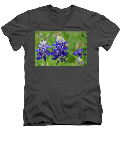 Texas Bluebonnets Men's V-Neck T-Shirt by Debra Martz