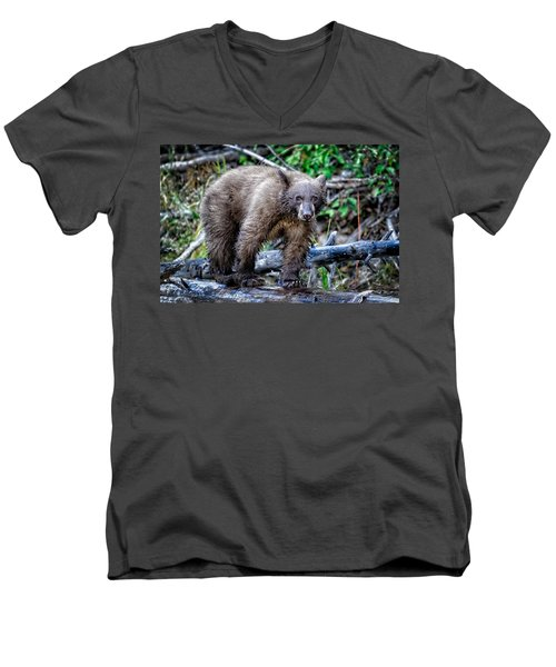 Men's V-Neck T-Shirt featuring the photograph The Balance Beam by Jim Thompson