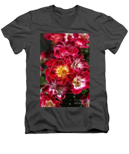 The Beauty Of Carpet Roses  Men's V-Neck T-Shirt