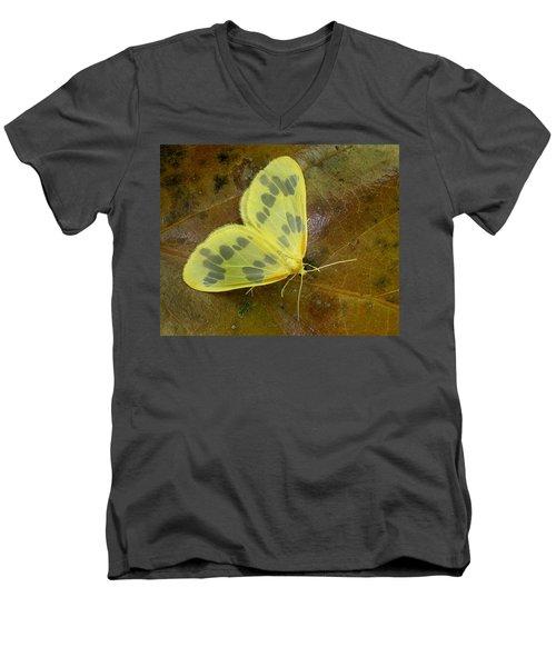 The Beggar Moth Men's V-Neck T-Shirt