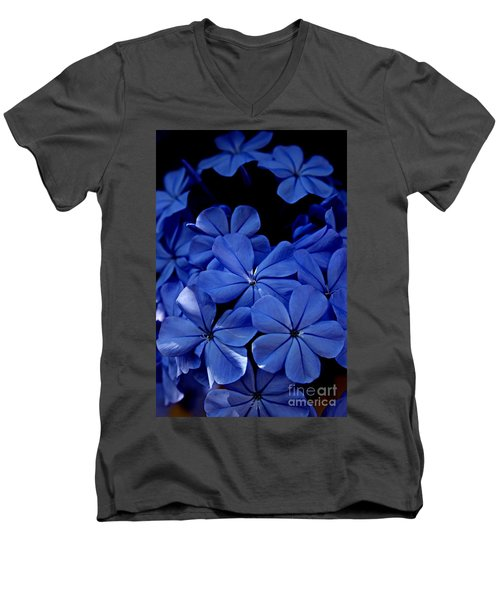 The Blues Men's V-Neck T-Shirt