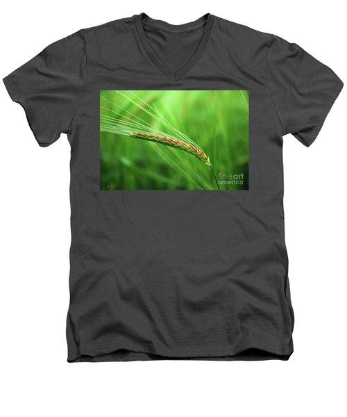 The Corn Men's V-Neck T-Shirt
