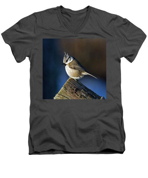 The Crested Tit In The Sun Men's V-Neck T-Shirt