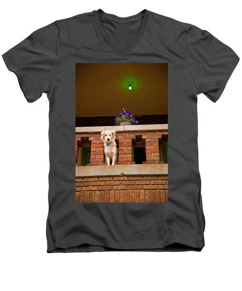 The Critic Men's V-Neck T-Shirt