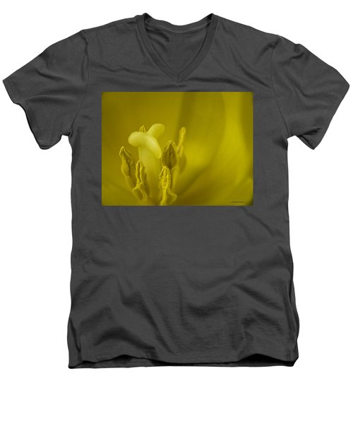 Men's V-Neck T-Shirt featuring the photograph The Dance by Lucinda Walter