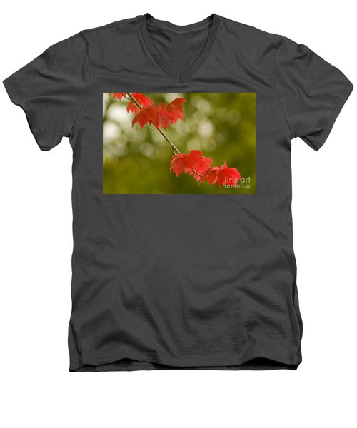 The Essence Of Autumn Men's V-Neck T-Shirt by Nick  Boren